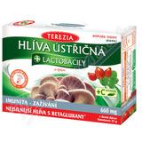 Hlíva ústřičná + probiotika + vitamin C cps. 50+10