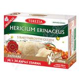 Hericium erinaceus s rakyt. olejem cps. 30+30 ZDARMA